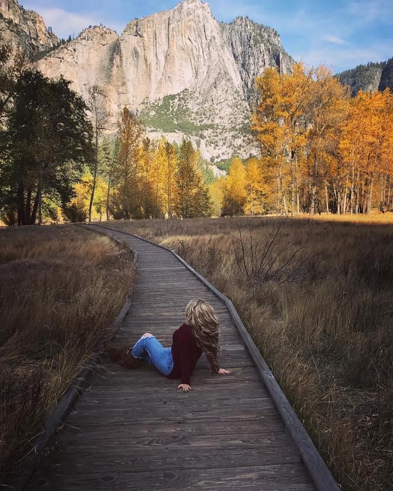 Fall colors on the Yosemite Valley floor